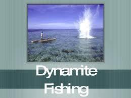dynamitefishing